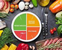 Nutrition & Diet  - 500,00 €